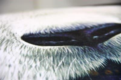 Подушка декор Panda 60*70см - фото 7528