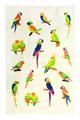 Рушник махр Папуги 30*50 350г/м2 - фото 9246